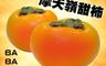好魚網 6.0折! - 摩天嶺高海拔富有甜柿