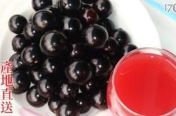 平均每斤最低只要165元起(含運)即可享有天然聖品~嘉寶果樹葡萄2斤/3斤/5斤/10斤(1斤/盒)。