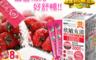 生活市集 2.0折! - 欣敏立清草莓多多益生菌