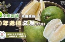 【南農嚴選】吉園圃認證麻豆在地40年老欉文旦禮盒(10斤/箱)