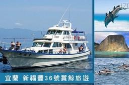 宜蘭 新福豐36號賞鯨旅遊-不分平假日讓我們賞鯨去專案