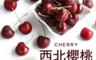 生活市集 2.8折! - 空運9.5Row櫻桃1盒(2kg/禮盒)