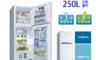 台灣三洋 7.0折! - 1級250L雙門電冰箱 (SR-C250B1)